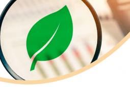 Avanza plan de auditorías intermedias del APL 2