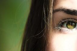 Huevo y sus beneficios para la salud ocular