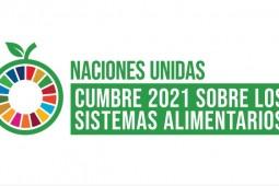 Cumbre de Sistemas Alimentarios: Chilehuevos lidera reacción privada