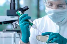 Actualizan límites de presencia de medicamentos veterinarios