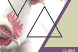 Chilehuevos organiza curso de bienestar animal de ponedoras