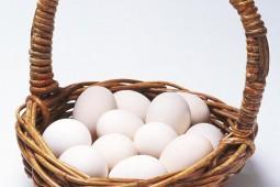 Huevo: Alimento natural y nutritivo  en envase perfecto